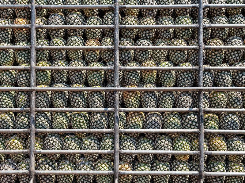 Transportul fructelor și legumelor pe rute naționale și internaționale