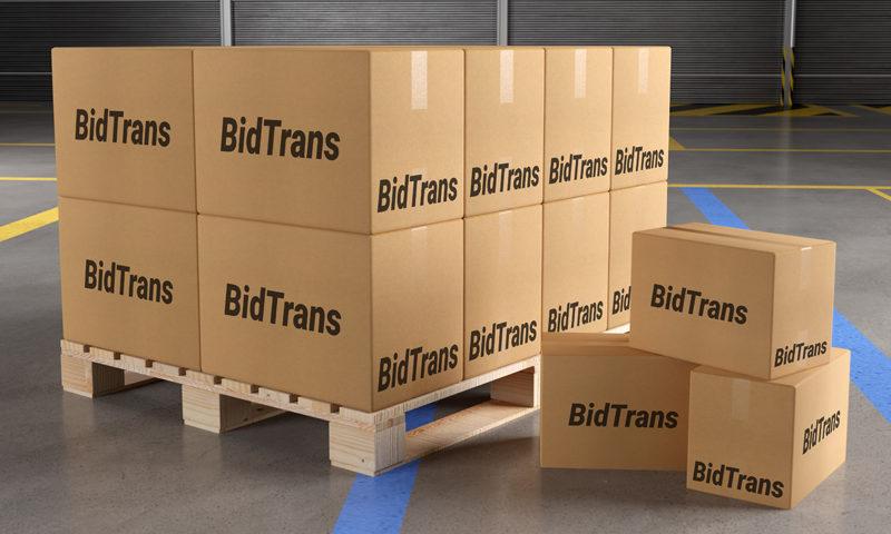 Tipuri de paleti pentru transport marfa intern si international